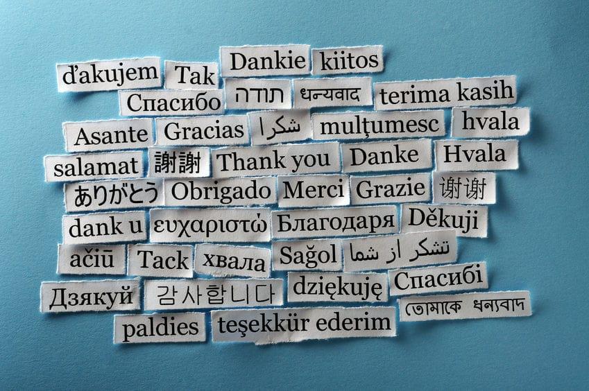 La Formación Profesional Y Los Idiomas Lanuevafp